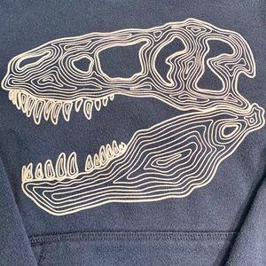 Toddler Glow-In-The-Dark T-Rex Skull Sweatshirt